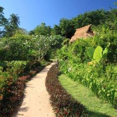 Отель Koh Tao Cabana Resort Таиланд, Остров Тау - отзывы, цены и фото номеров - забронировать отель Koh Tao Cabana Resort онлайн приотельная территория фото 2