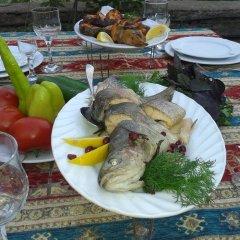 Отель Garnitoun Армения, Лусарат - отзывы, цены и фото номеров - забронировать отель Garnitoun онлайн питание фото 3