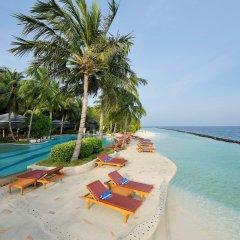 Отель Royal Island Resort And Spa бассейн