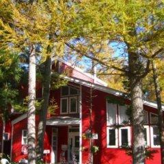 Отель Chillps Япония, Хакуба - отзывы, цены и фото номеров - забронировать отель Chillps онлайн фото 9