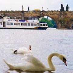 Апартаменты The Castle Apartments Прага пляж