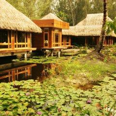 Отель Bora Bora Pearl Beach Resort Французская Полинезия, Бора-Бора - отзывы, цены и фото номеров - забронировать отель Bora Bora Pearl Beach Resort онлайн фото 4