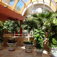Отель 4R Playa Park фото 5