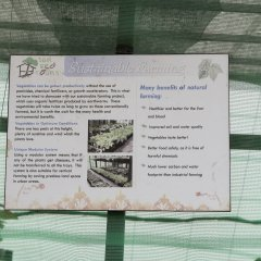Отель Siloso Beach Resort, Sentosa спа фото 2