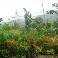 Отель Tavan Ecologic Homestay Вьетнам, Шапа - отзывы, цены и фото номеров - забронировать отель Tavan Ecologic Homestay онлайн фото 13