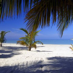 Charela Inn Hotel пляж фото 2