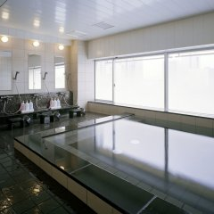 Отель Mitsui Garden Hotel Shiodome Italia-gai Япония, Токио - 1 отзыв об отеле, цены и фото номеров - забронировать отель Mitsui Garden Hotel Shiodome Italia-gai онлайн бассейн