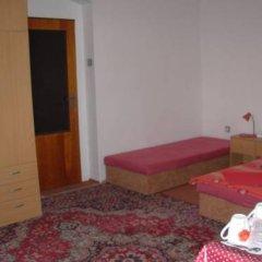 Отель Penzion Hlinkova Чехия, Пльзень - отзывы, цены и фото номеров - забронировать отель Penzion Hlinkova онлайн комната для гостей фото 2