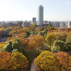 Отель Hyatt Regency Tokyo Токио фото 5