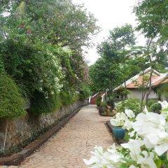 Отель Long Hai Beach Resort фото 2
