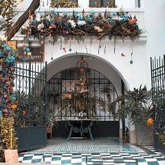 Отель Orchid House Polanco Мехико фото 9