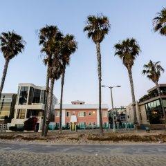 Отель Venice on the Beach Hotel США, Лос-Анджелес - отзывы, цены и фото номеров - забронировать отель Venice on the Beach Hotel онлайн с домашними животными