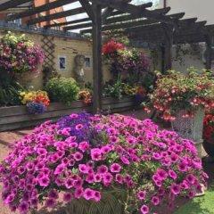 Отель The Dorrington Великобритания, Халстед - отзывы, цены и фото номеров - забронировать отель The Dorrington онлайн фото 3