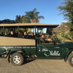 Отель Addo Wildlife Южная Африка, Аддо - отзывы, цены и фото номеров - забронировать отель Addo Wildlife онлайн парковка