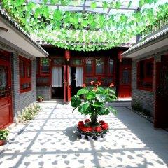 Отель Zhantan Courtyard Hotel Китай, Пекин - отзывы, цены и фото номеров - забронировать отель Zhantan Courtyard Hotel онлайн фото 11