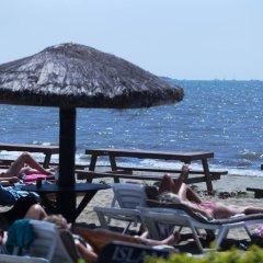 Отель Smugglers Cove Beach Resort and Hotel Фиджи, Вити-Леву - отзывы, цены и фото номеров - забронировать отель Smugglers Cove Beach Resort and Hotel онлайн пляж