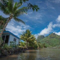 Отель Bora Bora Bungalove Французская Полинезия, Бора-Бора - отзывы, цены и фото номеров - забронировать отель Bora Bora Bungalove онлайн фото 21