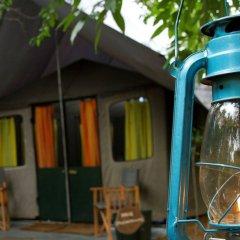 Отель Mahoora Tented Safari Camp All-Inclusive - Yala Шри-Ланка, Катарагама - отзывы, цены и фото номеров - забронировать отель Mahoora Tented Safari Camp All-Inclusive - Yala онлайн вид на фасад