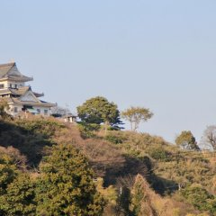 Отель Toji Stay HIROMIYA Беппу приотельная территория