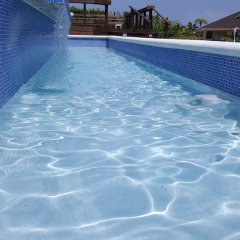 Отель Ocho Rios Villa at Coolshade IX бассейн фото 3
