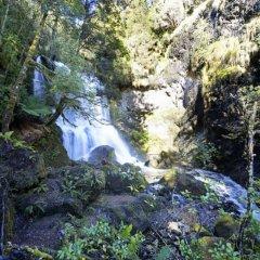 Отель Lemonthyme Wilderness Retreat фото 3