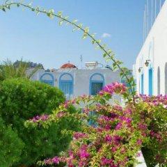Отель Katerina Apartments Греция, Калимнос - отзывы, цены и фото номеров - забронировать отель Katerina Apartments онлайн фото 6