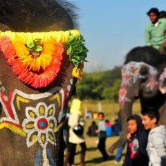 Отель Maruni Sanctuary by KGH Group Непал, Саураха - отзывы, цены и фото номеров - забронировать отель Maruni Sanctuary by KGH Group онлайн фото 17