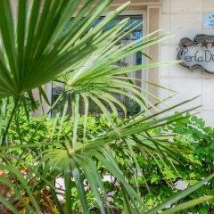 Отель Villa Perla Di Mare Будва