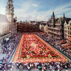 Отель Sun Rise Hotel Бельгия, Брюссель - отзывы, цены и фото номеров - забронировать отель Sun Rise Hotel онлайн фото 11
