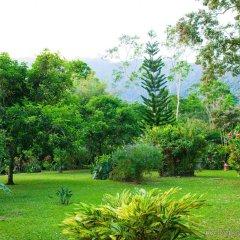 Отель The Lodge at Pico Bonito фото 9