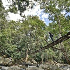 Отель Ella Jungle Resort Шри-Ланка, Бандаравела - отзывы, цены и фото номеров - забронировать отель Ella Jungle Resort онлайн фото 3