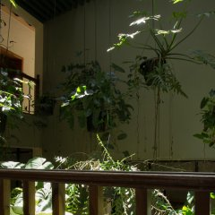 Serene Garden Hotel балкон