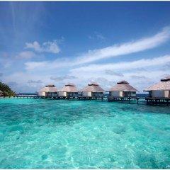 Отель Ellaidhoo Maldives by Cinnamon бассейн фото 2