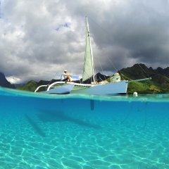 Отель Hibiscus Французская Полинезия, Муреа - отзывы, цены и фото номеров - забронировать отель Hibiscus онлайн приотельная территория фото 2
