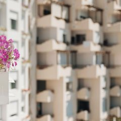 Отель Bougainville Bay Serviced Apartments Албания, Саранда - отзывы, цены и фото номеров - забронировать отель Bougainville Bay Serviced Apartments онлайн гостиничный бар