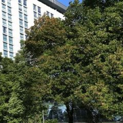 Отель Hilton Vienna фото 4