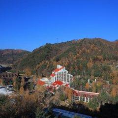 Отель Yongpyong Resort Dragon Valley Hotel Южная Корея, Пхёнчан - отзывы, цены и фото номеров - забронировать отель Yongpyong Resort Dragon Valley Hotel онлайн балкон