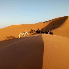 Отель Camels House Марокко, Мерзуга - отзывы, цены и фото номеров - забронировать отель Camels House онлайн бассейн