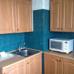 Гостиница V Kupchino Apartments в Санкт-Петербурге отзывы, цены и фото номеров - забронировать гостиницу V Kupchino Apartments онлайн Санкт-Петербург фото 3