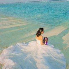 Отель Club Blu Мальдивы, Мале - отзывы, цены и фото номеров - забронировать отель Club Blu онлайн бассейн