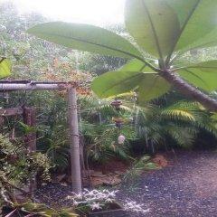 Отель Lanta Dream Garden Pool Villa Ланта фото 6