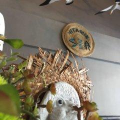 Vitamin Sea Hostel Phuket с домашними животными