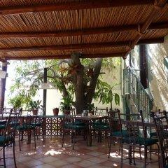 Отель Posada Terranova Мексика, Сан-Хосе-дель-Кабо - отзывы, цены и фото номеров - забронировать отель Posada Terranova онлайн питание фото 3
