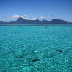 Отель Tahiti Sail and Dive Французская Полинезия, Бора-Бора - отзывы, цены и фото номеров - забронировать отель Tahiti Sail and Dive онлайн пляж фото 4