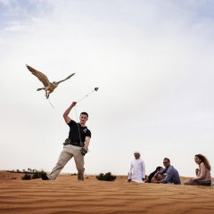 Отель Pullman Dubai Jumeirah Lakes Towers развлечения