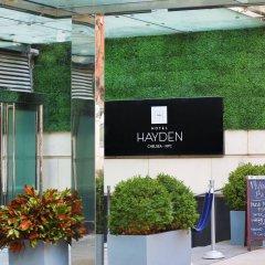 Отель Hayden США, Нью-Йорк - отзывы, цены и фото номеров - забронировать отель Hayden онлайн с домашними животными