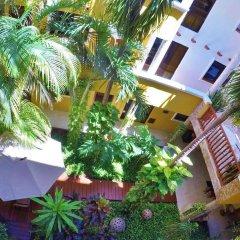 Отель Las Golondrinas Плая-дель-Кармен