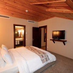 Gazelle Resort & Spa Турция, Болу - отзывы, цены и фото номеров - забронировать отель Gazelle Resort & Spa онлайн удобства в номере