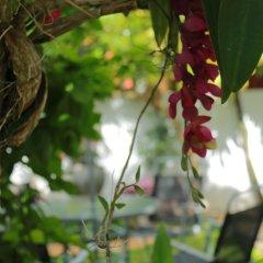 Отель Suramya Villa Шри-Ланка, Галле - отзывы, цены и фото номеров - забронировать отель Suramya Villa онлайн фото 2