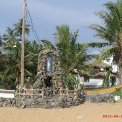 Отель Barasti Beach Resort Шри-Ланка, Ваддува - отзывы, цены и фото номеров - забронировать отель Barasti Beach Resort онлайн пляж фото 2
